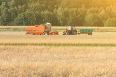 五谷收割机收集在领域的麦子在热的太阳下,麦田,麦子收获 免版税图库摄影