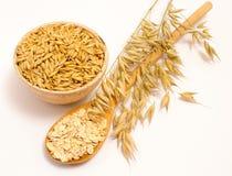 五谷燕麦和燕麦粥 免版税图库摄影