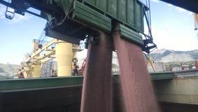 五谷的降雨雪从汽车的到罐车的举行里 船的货舱的五谷装填 免版税库存照片