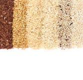 五谷米品种行;粗糙的红色和白米,小米 库存图片