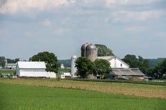 五谷金属筒仓在兰卡斯特宾夕法尼亚安曼人国家 库存图片