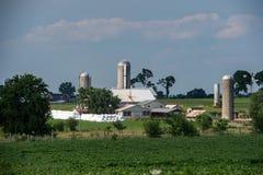五谷金属筒仓在兰卡斯特宾夕法尼亚安曼人国家 库存照片