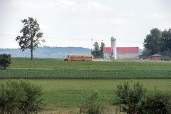 五谷金属筒仓在兰卡斯特宾夕法尼亚安曼人国家 免版税库存照片