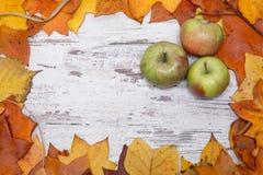 五颜六色和明亮的秋季背景,秋叶,在与三绿色和红色苹果的破旧的白色木背景 autum 库存图片