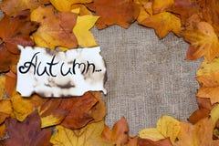 五颜六色和明亮的背景,秋叶,在麻袋布背景 题字是在羊皮纸的秋天 三gre 免版税图库摄影