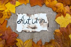 五颜六色和明亮的背景,秋叶,在麻袋布背景 题字是在羊皮纸的秋天 秋天概念查出的白色 库存照片