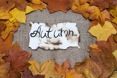 五颜六色和明亮的背景,秋叶,在麻袋布背景 题字是在羊皮纸的秋天 秋天概念查出的白色 免版税库存图片