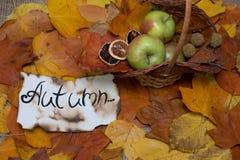 五颜六色和明亮的背景,秋叶,在麻袋布背景 题字是在羊皮纸的秋天 秋天ba 免版税库存照片