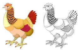 五颜六色和黑白样式母鸡 图库摄影