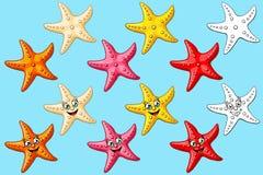 五颜六色大集合的海星和等高 免版税库存照片