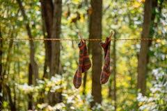 五颜六色手编织垂悬的袜子烘干在晒衣绳 免版税库存图片