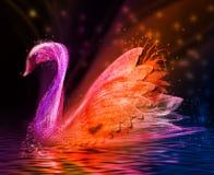 五颜六色抽象的鸟 天鹅 图库摄影
