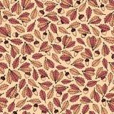 五颜六色的与秋天橡木的传染媒介手拉的样式在米黄背景离开和橡子 免版税库存照片