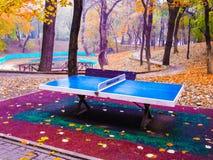五颜六色的乒乓球,背景 图库摄影