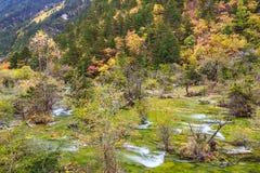 五颜六色的九寨沟国家公园在秋天 免版税图库摄影