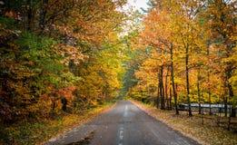 五颜六色的乡下公路在10月 库存照片