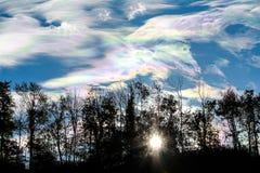 五颜六色的云彩和剪影树 免版税库存照片