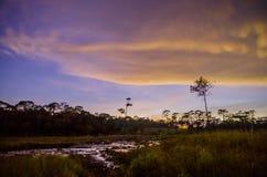 五颜六色的云彩在黎明 免版税库存图片
