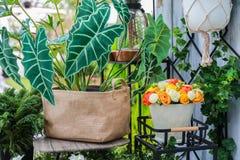 五颜六色的人造花和一棵植物麻袋布的在a请求 免版税库存照片