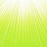 绿色星背景 免版税库存照片