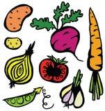 五颜六色的健康菜集合 向量例证