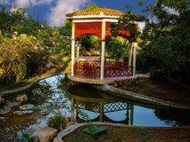 五颜六色的公园在热带 图库摄影