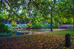 五颜六色的公园风景在秋天 图库摄影