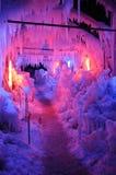 五颜六色的冬天妙境 库存图片