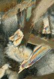 五颜六色的冰纹理 库存图片