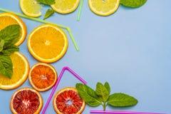 五颜六色的切片桔子,柠檬,红色橙色和薄荷 鸡尾酒小管 在匙子的一个干早餐 免版税库存照片