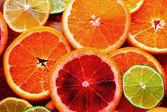五颜六色的切的柑桔 免版税图库摄影
