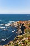 五颜六色的加利福尼亚海洋海岸线 图库摄影