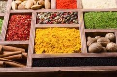 五颜六色的印第安香料 图库摄影