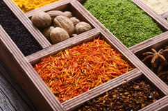 五颜六色的印第安香料 库存照片