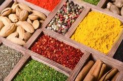 五颜六色的印第安香料 库存图片