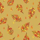 五颜六色的叶子和下落分裂您的设计的 橙色 免版税库存图片