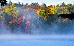 以五颜六色的叶子和树为特色在Ontario湖的有雾的有薄雾的夏天早晨 免版税库存图片