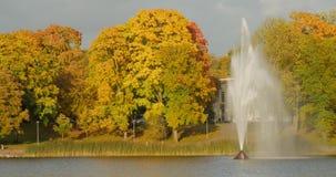 五颜六色的叶子在秋天公园 有喷泉的湖在德鲁斯基宁凯, Lithunia 美好的秋天风景与 股票录像