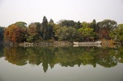 五颜六色的叶子在秋天 库存照片