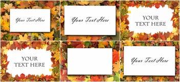 五颜六色的叶子季节性秋天背景  库存图片