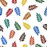 五颜六色的叶子样式 图库摄影