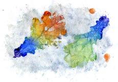五颜六色的叶子橡木 免版税库存照片