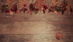 五颜六色的叶子的秋天安排,橡子,在木背景的栗子果子与文本的自由空间 顶视图 图库摄影