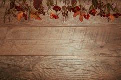 五颜六色的叶子的秋天安排,橡子,在木背景的栗子果子与文本的自由空间 顶视图 库存图片