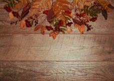 五颜六色的叶子的秋天安排,橡子,在木背景的栗子果子与文本的自由空间 顶视图 免版税库存照片