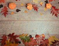 五颜六色的叶子的秋天安排,橡子,在木背景的栗子果子与文本的自由空间 顶视图 免版税图库摄影