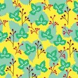 五颜六色的叶子背景的样式 免版税库存照片