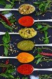 五颜六色的各种各样的草本和香料烹调的在黑暗的背景 免版税库存照片