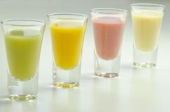 五颜六色的四名新鲜水果圆滑的人 库存照片