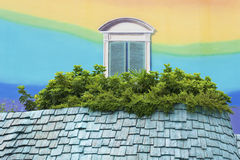五颜六色的墙壁和窗口 免版税库存图片